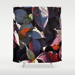 Pattern #10 Shower Curtain