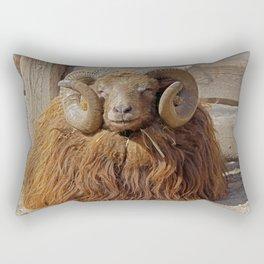 Skudde Rectangular Pillow