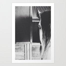 Black and White Horse Art Print