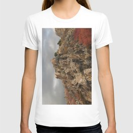 Rocky Mountain with a Splash of Color T-shirt