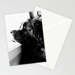 day dreams Stationery Cards