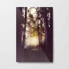 Nebel Metal Print