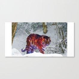 Galaxy Tiger Canvas Print