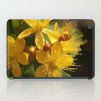 marc johns iPad Cases featuring Turkish St Johns Wort Wild Flower Vector Image by taiche