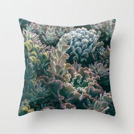 Mornings In The Succulent Garden #1 Throw Pillow