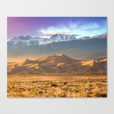 Deer and the Dunes Canvas Print