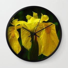 I know how the Iris Felt Wall Clock