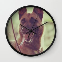 Malinios Beauty dog picture Wall Clock