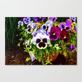 Purple Pansy Garden Galore! Canvas Print