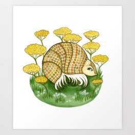Armadillo in Achillea Art Print