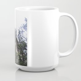 Devil's Tower National Park Coffee Mug