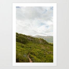 Snodgrass Trail 2 Art Print