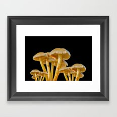 FAIRY MUSHROOMS Framed Art Print