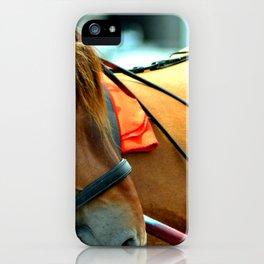Horse in Amsterdam iPhone Case