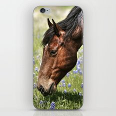 Don't Eat The Bluebonnets iPhone Skin