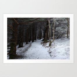 Winter on the AT Art Print