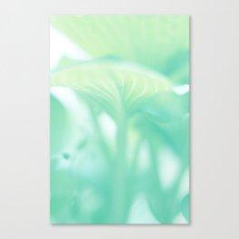 Tropical NO1 Canvas Print
