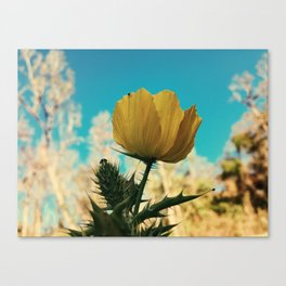 One Girl's Weed is Another Girl's Flower Canvas Print