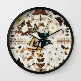Antique Vintage Butterfly Display Wall Clock