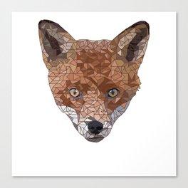 Felix the Fox Canvas Print