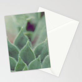 SIMPLY SUCCULENT Stationery Cards
