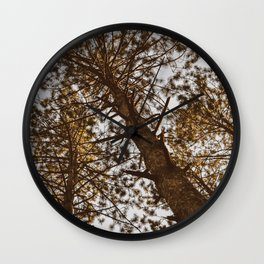 Wooded Sky Wall Clock