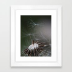 ready to fly Framed Art Print