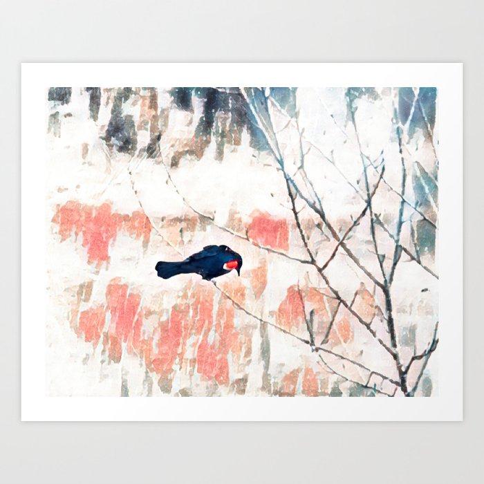 Red Wing Blackbird Kunstdrucke