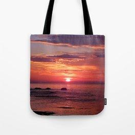 The Flamboyant One Tote Bag