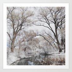 Winter Creek Canopy Art Print