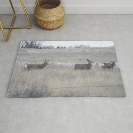 The Chase Rug