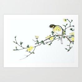 Bunting And Blossoming Tree Flowers - Vintage Japanese Woodblock Print Art By Numata Kashu (1885) Art Print