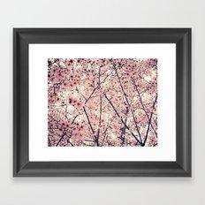 Blizzard of Blossoms Framed Art Print