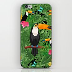 Toucan tropic iPhone Skin