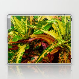 Tropical Croton Plant Laptop & iPad Skin