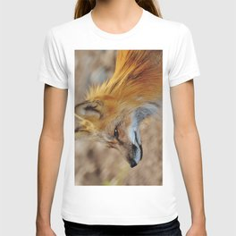 Inquisitive Mr. Fox T-shirt