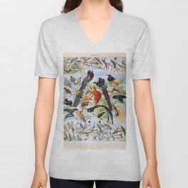 Adolphe Millot - Oiseaux B - French vintage poster Unisex V-Neck
