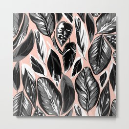 Calathea black & grey leaves with pale background Metal Print