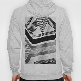 Modern Zebra Abstract Hoody