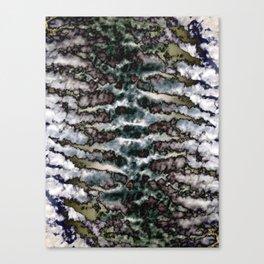 π Tureis Canvas Print