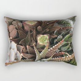Contemporary Succulent Garden Rectangular Pillow