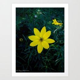 Yellow Flower 1 Art Print