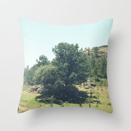 Landscape in Portugal Throw Pillow