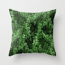 Blessed be the morning of the spiders... Throw Pillow