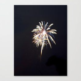 Fireworks on the Fourth Canvas Print