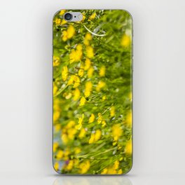 Buttercups in motion iPhone Skin
