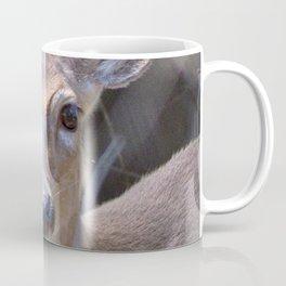 Watercolor Deer White-tail 01, Timidity Coffee Mug