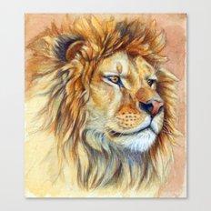 Lion 851 Canvas Print