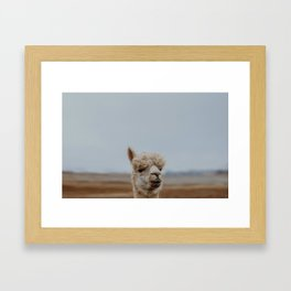 A CHANGE IN THE AIR Framed Art Print