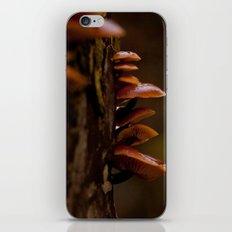 Mushrooms. iPhone & iPod Skin